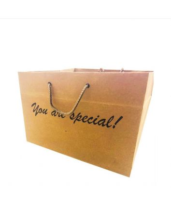 KRAFT PAPER BAG - BIG - 11X11X8 INCHES - PACK OF 10